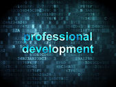 Education concept: professional development on digital — Foto Stock