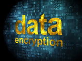 Information concept: data encryption on digital background — Foto Stock