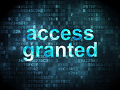 Information concept: access granted on digital background — Stock Photo