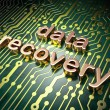 Information concept: circuit board with word Data Recovery — Stock Photo