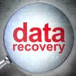 Information concept: optical glass with words Data Recovery - ストック写真