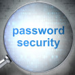 Privacy concept: optical glass with words Password Security — Stock Photo #19675233