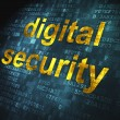 Security concept: Digital Security on digital background - 