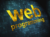 SEO web development concept: Web Programming on digital backgrou — Foto Stock