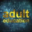 Education concept: Adult Education on digital background — Stock Photo #20717981