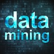Data concept: Data Mining on digital background - Foto de Stock