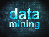 Data concept: Data Mining on digital background — Stock Photo