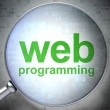 SEO web development concept: Web Programming with optical glass - Stock fotografie