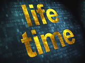 Timeline concept: Life Time on digital background — Stock Photo