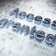 Stock Photo: Privacy concept: Silver Access Granted on digital background