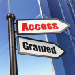 Stock Photo: Protection concept: Access Granted on Building background