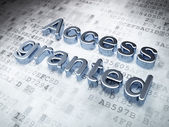 Privacy concept: Silver Access Granted on digital background — Stock Photo