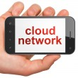 Cloud technology concept: Cloud Network on smartphone — Stock Photo #25384365