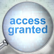 Stock Photo: Safety concept: Access Granted with optical glass