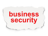 Protection concept: Business Security on Paper background — Stock Photo