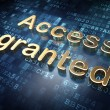 Stock Photo: Security concept: Golden Access Granted on digital background