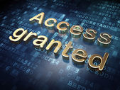 Security concept: Golden Access Granted on digital background — Stockfoto