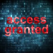 Stock Photo: Security concept: Access Granted on digital background