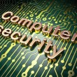 Постер, плакат: Security concept: Computer Security on circuit board background