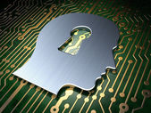 Safety concept: Head Whis Keyhole on circuit board background — Foto Stock