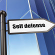 Stock Photo: Protection concept: Self Defense on Building background