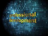 Education concept: Professional Development on digital backgroun — Stock Photo