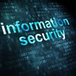 Security concept: Information Security on digital background — Stock Photo #28824913