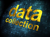 Information concept: Data Collection on digital background — Stock Photo