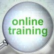 Foto de Stock  : Education concept: Online Training with optical glass