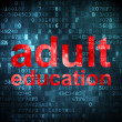 Stock Photo: Education concept: Adult Education on digital background