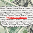 Stock Photo: Education concept: Professional Development on Money background