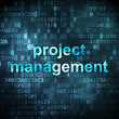 Business concept: Project Management on digital background — Stock Photo