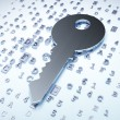 Foto de Stock  : Privacy concept: Silver Key on digital background
