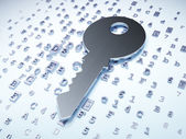 Privacy concept: Silver Key on digital background — Stock Photo