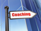 Education concept: Coaching on Building background — Stockfoto