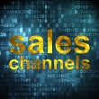 Advertising concept: Sales Channels on digital background — Stock Photo