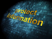 Protection concept: Protect Information on digital background — Stock Photo