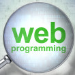 SEO web development concept: Web Programming with optical glass — Zdjęcie stockowe #29531721