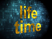 Time concept: Life Time on digital background — Stock Photo