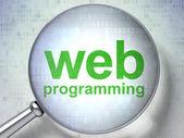 Conceito de desenvolvimento seo web: Web programação com vidro óptico — Fotografia Stock