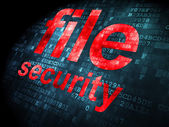 Security concept: File Security on digital background — Stock Photo