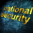 Safety concept: National Security on digital background — Photo