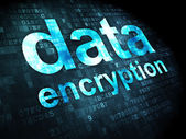 Privacy concept: Data Encryption on digital background — Stockfoto