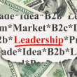 Foto Stock: Finance concept: Leadership on Money background