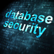 Foto Stock: Security concept: Database Security on digital background