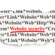 Web development concept: Website Security on Paper background — Stock Photo