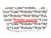 Web development concept: Website Security on Paper background — Photo