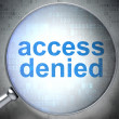Security concept: Access Denied with optical glass — Stockfoto