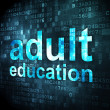 Education concept: Adult Education on digital background — Stock Photo #31897303