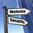 Web development concept: Website Security on Building background — Stock Photo #32064191